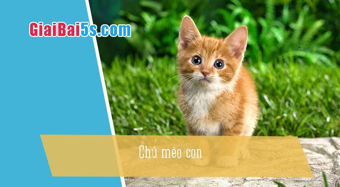 Phần thứ nhất : Văn miêu tả-II. Tả vật (đồ vật, con vật)-Bài số 3. Tả ngoại hình một con vật nuôi trong gia đình: chú mèo con