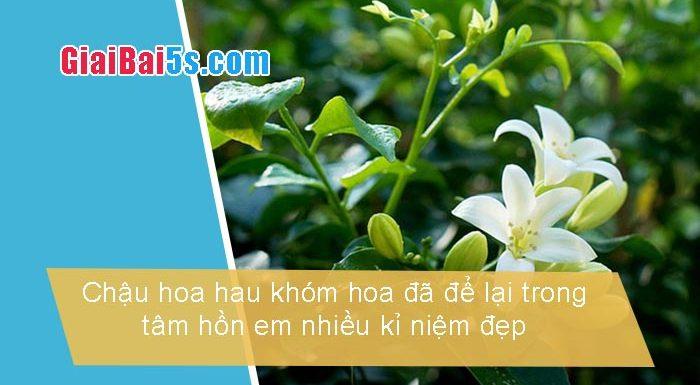 Phần thứ nhất : Văn miêu tả-III. Tả cỏ cây, hoa lá-Bài số 8. Kể và tả một chậu hoa hay một khóm hoa đã để lại trong tâm hồnem nhiều kỉ niệm đẹp