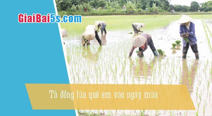 Phần thứ nhất : Văn miêu tả-IV. Tả phong cảnh, cảnh vật-Bài số 10. Tả đồng lúa quê em vào ngày mùa.