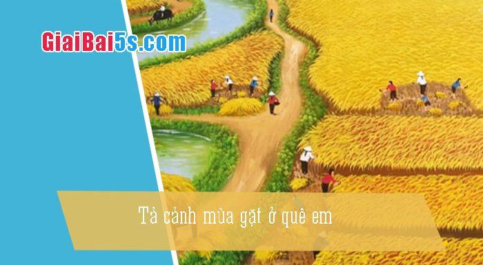 Phần thứ nhất : Văn miêu tả-IV. Tả phong cảnh, cảnh vật-Bài số 9. Tả cảnh mùa gặt ở quê em.