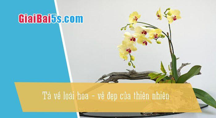 Phần thứ nhất : Văn miêu tả-III. Tả cỏ cây, hoa lá-Bài số 2. Hãy viết một bài văn miêu tả về loài hoa – vẻ đẹp của thiên nhiên