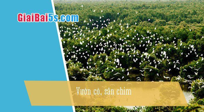 Phần thứ nhất : Văn miêu tả-IV. Tả phong cảnh, cảnh vật-Bài số 28. Vườn cò, sân chim